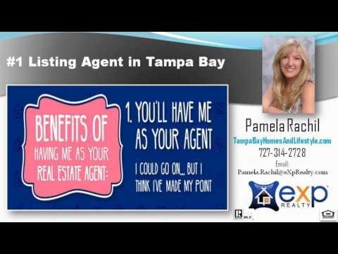 #1 Sales Agent in Palm Harbor FL