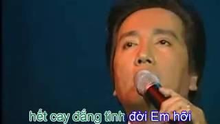 Tình yêu đến trong giã từ Karaoke - Nguyễn Ánh 9