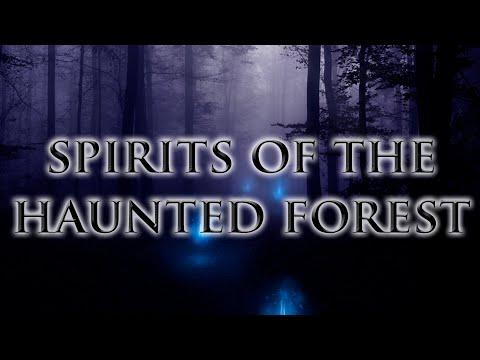 Dark music - Spirits of the haunted forest