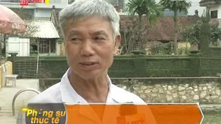 Phóng sự thực tế ngày 07/04 - Kênh truyền hình Let's Viet VTC9