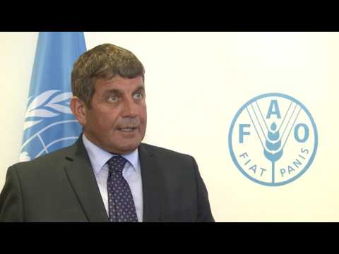 Remarks by Ireland's Minister of State for Food, Forestry and Horticulture