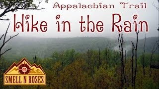 Appalachian Trail Hike in Rain to Hollow Brook Falls and Buzzard Hill