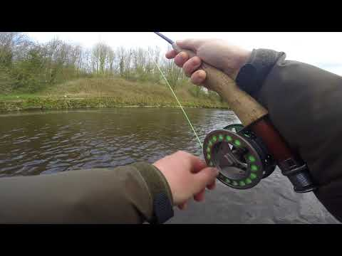 River Ribble Fly Fishing April 2018