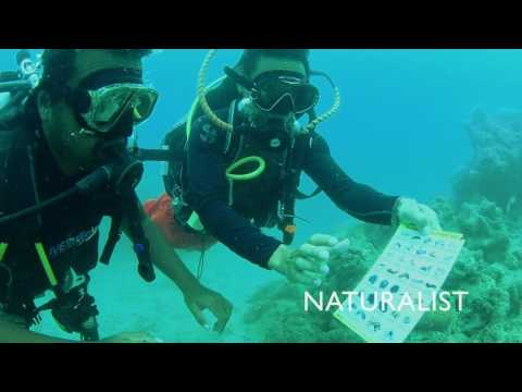 The next level for certified scuba divers – The Advanced course