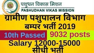 UP Pashupalan Vibhag Bharti 2019 पशुपालन विभाग बम्पर भर्ती 2019