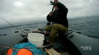 Рыбалка во Владивостоке 17.06.2017. Остров Русский.