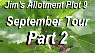 Jims Allotment - Plot 9 - September Tour Part 2 - Crickets and Water Butts