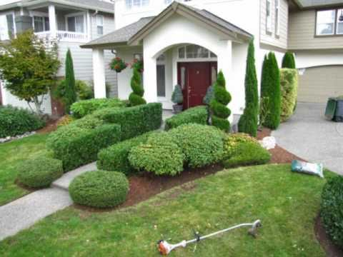 Pruning Shrubs And Trees Call 425 492 5000 Bothell Mill
