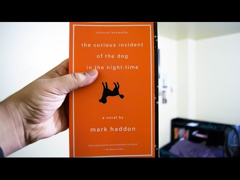 book report the curious incident of The curious incident of the dog in the night-time review – hong kong arts   the west end adaptation of mark haddon's bestselling book is.