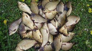секреты рыбалки спиннинг с берега РСН _ Secrets spinning fishing from the shore