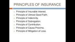 ppt Insurance - auto insurance with presentaion