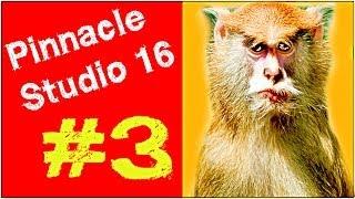 Pinnacle Studio 16 ,17 Эффект картинка в картинке Урок 3.Видеоредактор Мысля от Эдгара