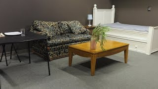 Furnishing an apartment for $100