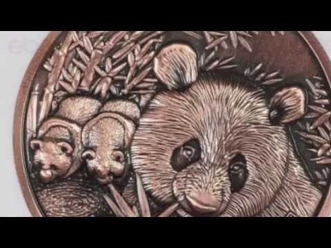 How are the Nanjing Pandas coming on? A good buy or not? More Silver and Copper versions arrive