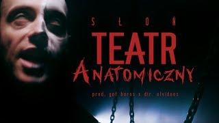 Słoń - Teatr Anatomiczny