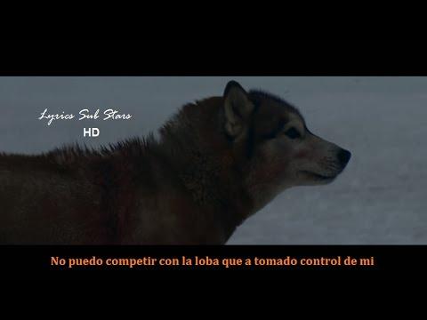 David Guetta -  She Wolf -  Lyrics Español