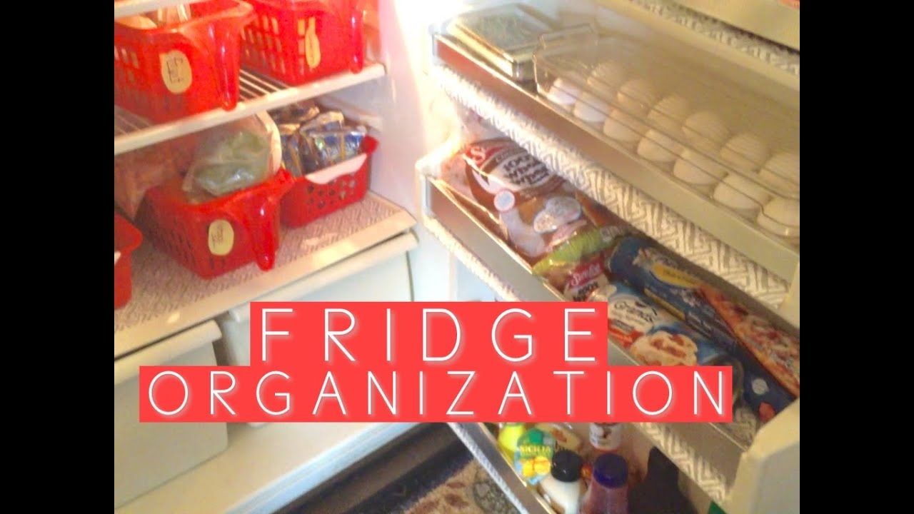 SMALL APARTMENT FRIDGE ORGANIZATION FOR UNDER $15 | DOLLAR TREE ...