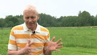Tā dzīvojam. Aitu audzētājs Kaspars Klaviņš (13.04.2020.)
