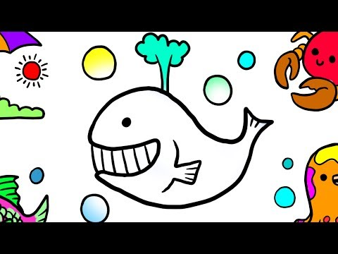 Coloring Book Dolphin for Kids, Teach Drawing for Kids and Learn color with Jellytoys