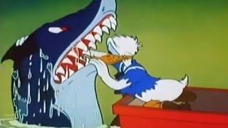 Video donal and pluto fishing Shark-Donal Duck Cartoon download MP3, 3GP, MP4, WEBM, AVI, FLV Juli 2018