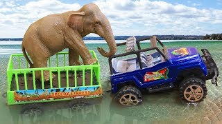 Xe ô tô chở động vật và các bạn con vật hài hước - đồ chơi trẻ em FMC G455M