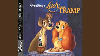 The Siamese Cat / Whats Going On Down There (From Lady And The Tramp / Original Motion Picture...