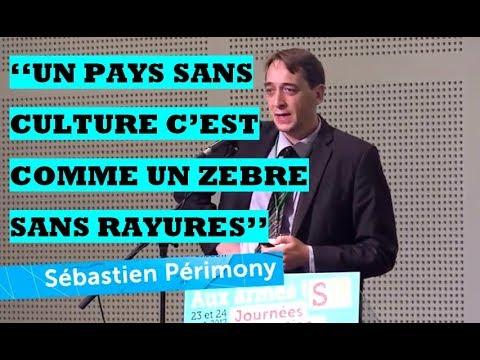 La falsification consciente de l'Histoire de l'humanité par S. Périmony.
