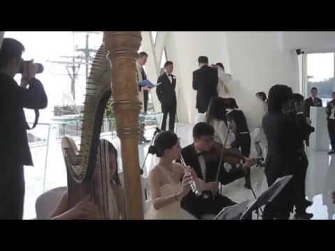 Canon in D - Harp, Flute & Violin Trio