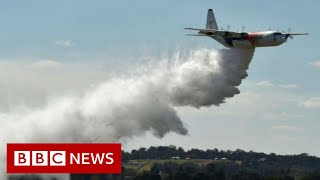 Australia fires: US crew dead in firefighting plane crash - BBC News