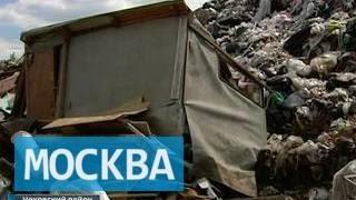 """Бомжей под Чеховом лишили """"Рублевки"""""""