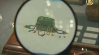 Омский «левша» проводит выставку своих работ