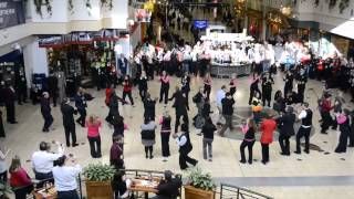 Delta Flash Mob at MSP - Video Clip