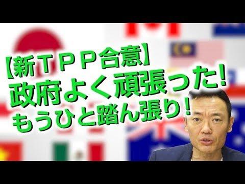 新TPP合意:政府は頑張ったが、もうひと踏ん張り!