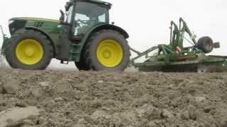 Siew kukurydzy, Niewieścin