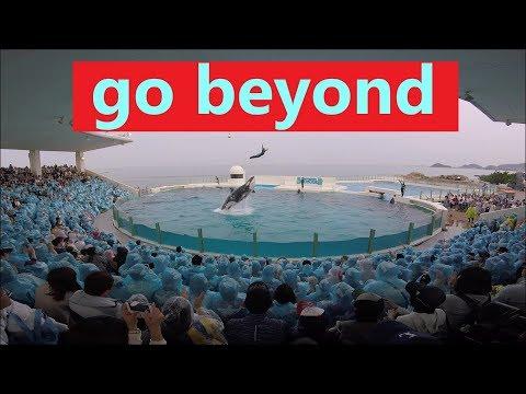 鴨川シーワールド 2019 シャチパフォーマンス451 ゴープロでソールドアウトのオーシャンスタジアムをハイビジョンで撮ってみた killer whale show