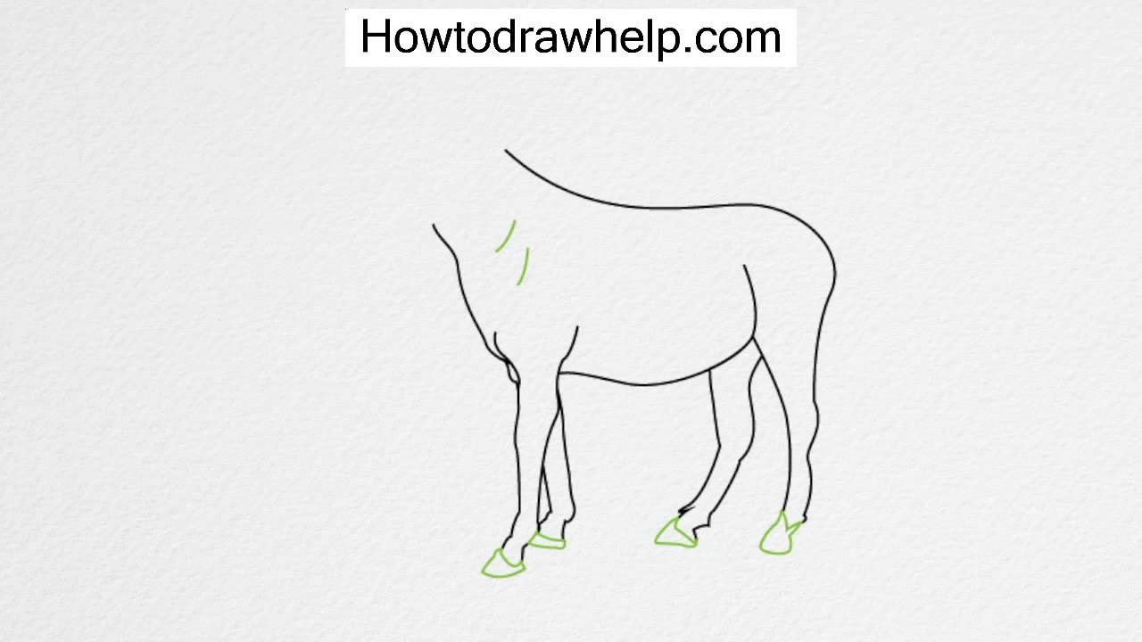 How To Draw A Horse Step By Step For Kids