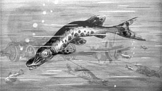 Басни И.А. Крылова Лебедь, рак и щука