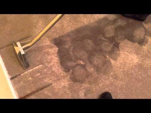 Flood Cleanup - Water Extraction - Water Damage Restoration Edmonton  780 475 4707  Gentle Steam