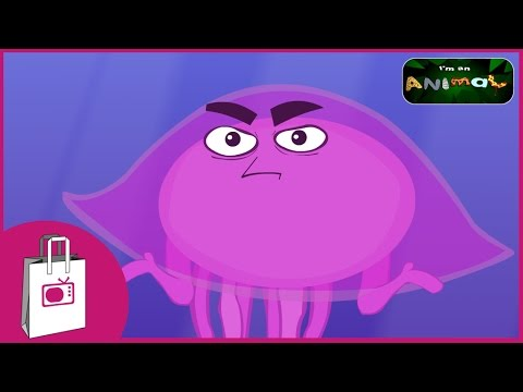 Im A Jellyfish