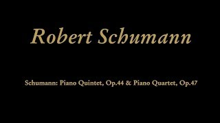 Robert Schumann - I. Sostenuto assai - Allegro ma non troppo