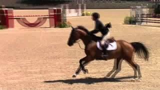 Landadel & Marissa Rice - Kentucky Horse Show Children's Jumper