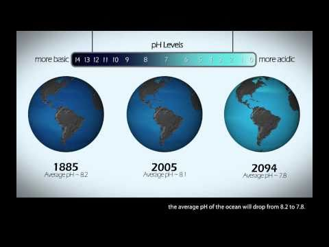 Ocean Acidification: The Other Carbon Dioxide Problem [1080p]