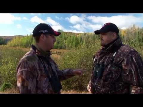 Contrôle du camouflage, des odeurs et de l'ouïe à la chasse aux gros gibiers