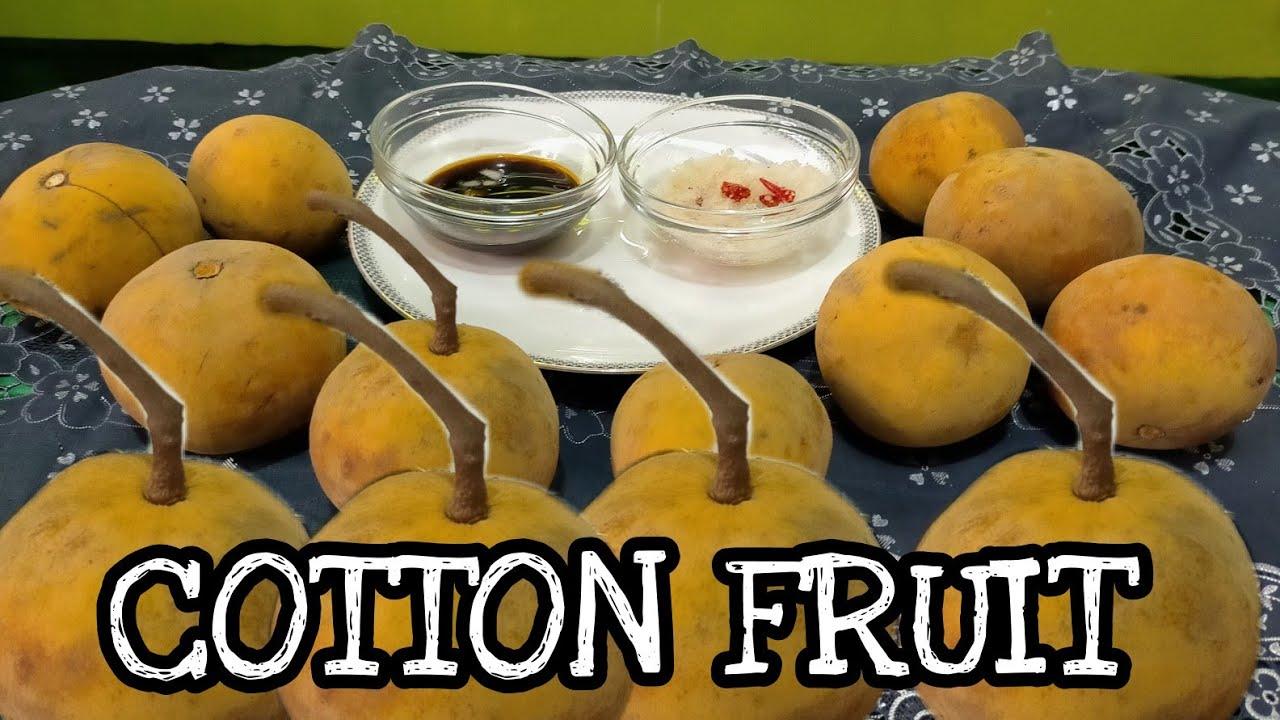 COTTON FRUIT (sobrang tamis ng SANTOL)