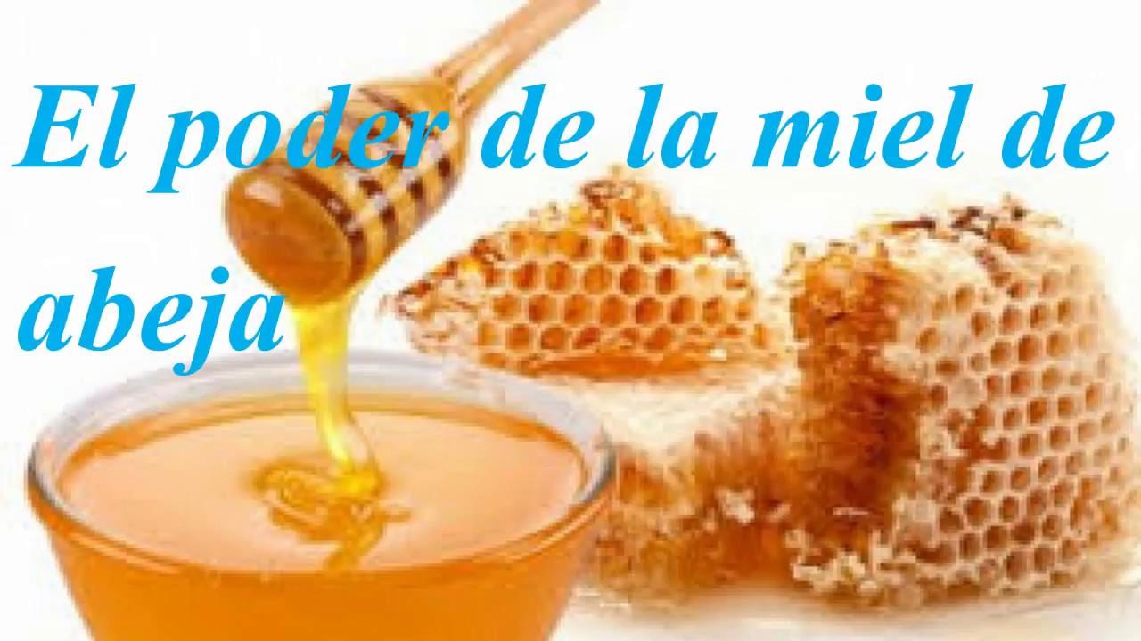 Para que es bueno la miel de abeja