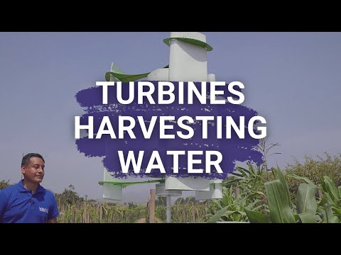 Harvesting water in Peru - MAX HIDALGO QUINTO- Young Champion of the Earth 2020, Latin America
