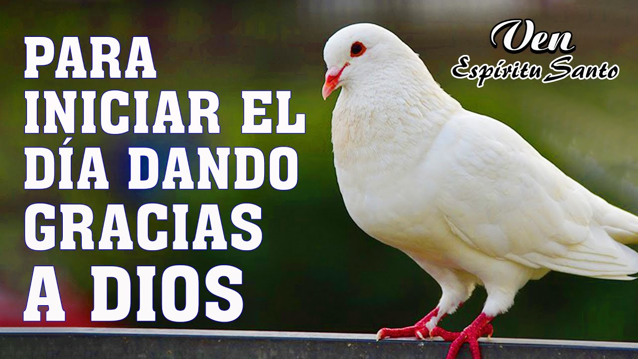 Download HERMOSAS ALABANZAS CRISTIANAS DE ADORACION 2021 - LA CANCIÓN CRISTIANAS MAS HERMOSA DEL MUNDO 2021