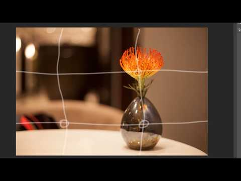 Simple one minute photography tutorial - The Rule of One Third in Photography thumbnail