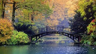 "Peaceful Relaxing Instrumental Music, Meditation Relaxing Music ""Golden Bridges"" by Tim Janis"