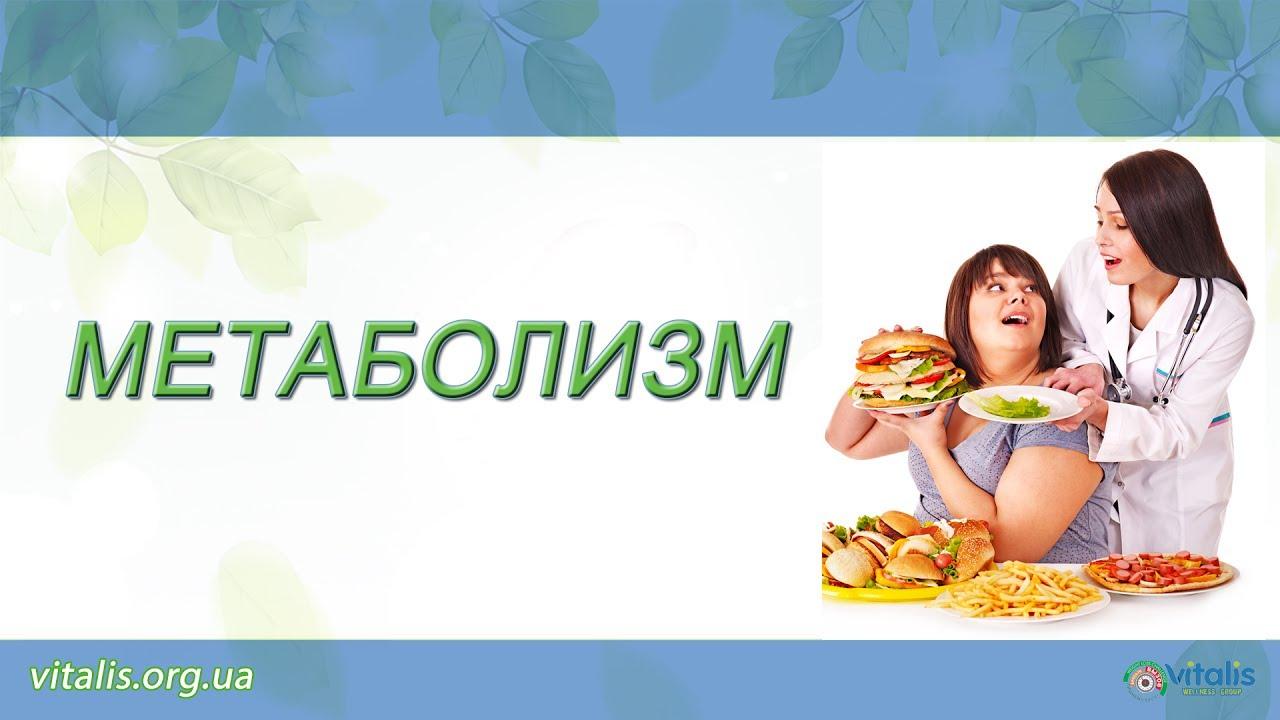 алина новикова диетолог